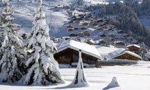 banner-skigebieden-210x127.jpg