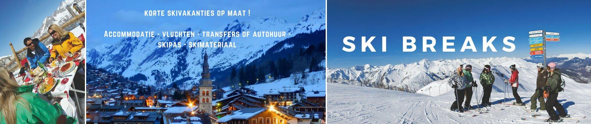 ski breaks grote foto banner